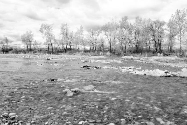 Sheep river 2